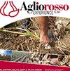 Aglio_Rosso_Experience