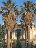 Valderice. Villa Betania