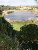Mazara del Vallo. Lago Preola 8
